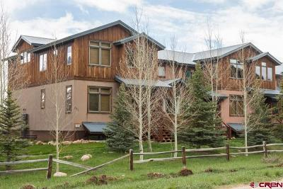 Gunnison County Condo/Townhouse For Sale: 311 Cement Creek Road #E
