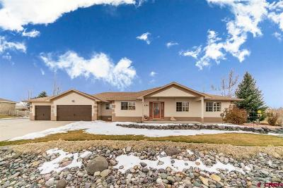 Montrose Single Family Home UC/Contingent/Call LB: 2702 Clover Court