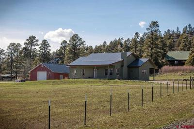 Pagosa Springs Single Family Home For Sale: 420 Ponderosa Drive