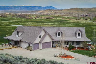 Gunnison Single Family Home For Sale: 155 Winze Road