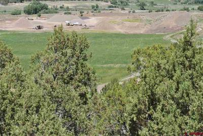 Durango, Bayfield, Cortez, Telluride Commercial For Sale: Rivervalley Cultivation