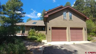 Durango Single Family Home For Sale: 602 Eagle Pass