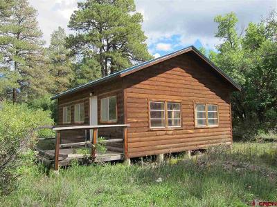 Pagosa Springs Single Family Home For Sale: 15 Robin Drive
