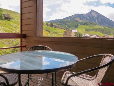 Mt. Crested Butte Condo/Townhouse For Sale: 25 Emmons Road #37