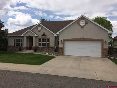 Montrose Single Family Home For Sale: 3714 Lone Tree Lane