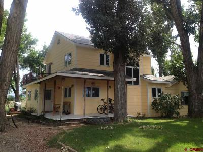 Delta County Single Family Home For Sale: 14434 Deer Run Road