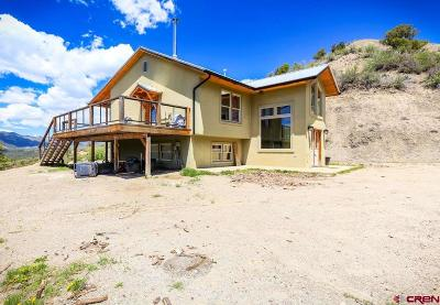 Pagosa Springs Single Family Home For Sale: 324 Collette's Place