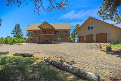 Pagosa Springs Single Family Home For Sale: 1284 Wheeler Place