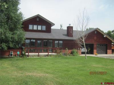 Gunnison County Single Family Home For Sale: 61 Spring Meadows Trail