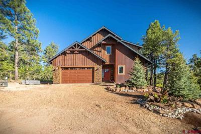 Pagosa Springs Single Family Home For Sale: 94 Handicap Avenue