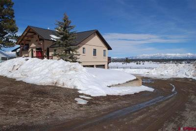 Pagosa Springs Single Family Home For Sale: 1865 N Pagosa Boulevard