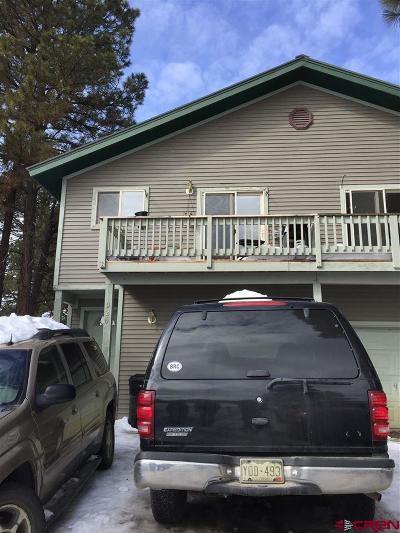 Pagosa Springs Single Family Home UC/Contingent/Call LB: 926 Cloud Cap Avenue