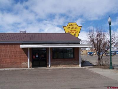 Gunnison County Commercial For Sale: 405 W Tomichi Avenue