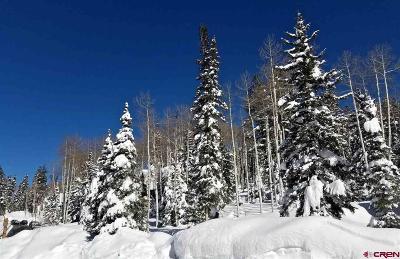 Durango Residential Lots & Land For Sale: 11 Storm Peak Drive