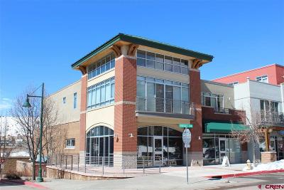 Durango, Bayfield, Cortez, Telluride Commercial For Sale: 555 Rivergate Lane #B1-101
