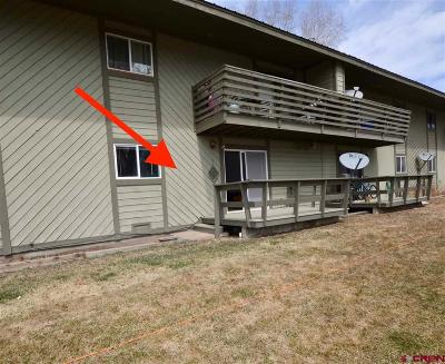 Gunnison County Condo/Townhouse For Sale: 115 Shavano Drive #106