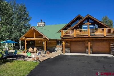 Gunnison County Single Family Home For Sale: 21681 Highway 135 Highway