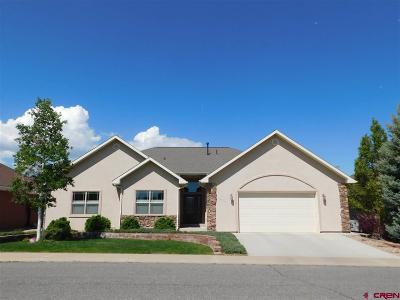 Montrose Single Family Home For Sale: 3812 Lone Tree Lane