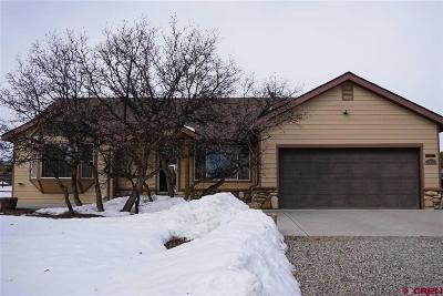 Durango Single Family Home UC/Contingent/Call LB: 2655 Cr 220