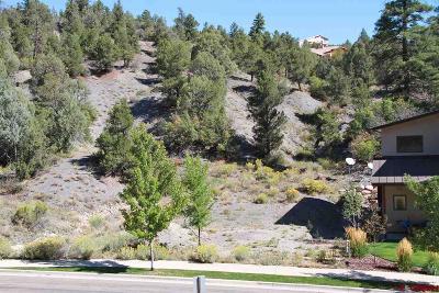 Durango Residential Lots & Land For Sale: 169 Ella Vita Court