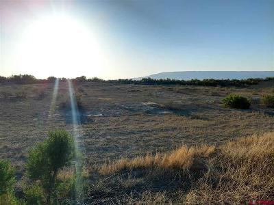 Delta Residential Lots & Land For Sale: 3815 Ruth Lane
