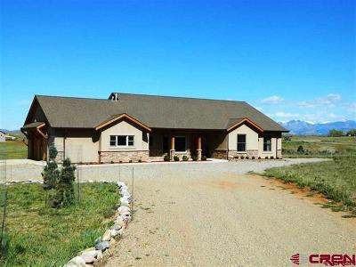 Durango Single Family Home For Sale: 605 Fork Horn Court