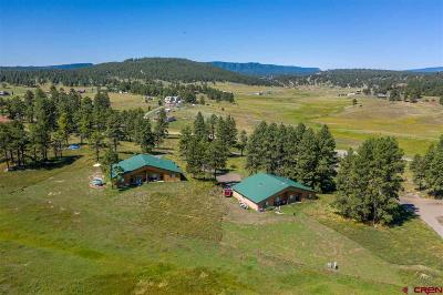 Pagosa Springs Single Family Home For Sale: 3000 Highway 84 #A&B