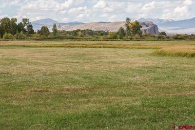 Gunnison Residential Lots & Land For Sale: 6 Red Tail Lane