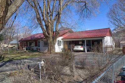 Hotchkiss, Crawford, Paonia Single Family Home For Sale: 217 Highway 133