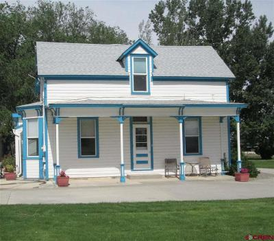 Montrose Single Family Home For Sale: 62954 Niagara Road