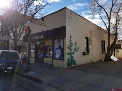 Commercial For Sale: 1137 Main Avenue Avenue