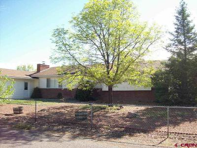 Eckert Single Family Home For Sale: 13228 Hillcrest Road