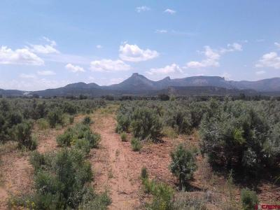 Mancos Residential Lots & Land For Sale: 33583 K.8 Road