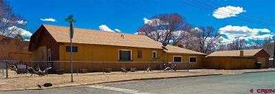 Alamosa Single Family Home UC/Contingent/Call LB: 730 Eighth Street