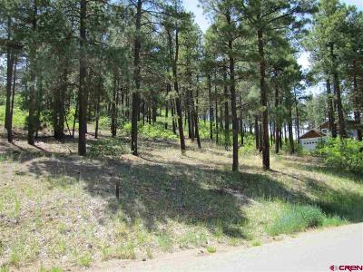 Durango Residential Lots & Land For Sale: 398 Iron King