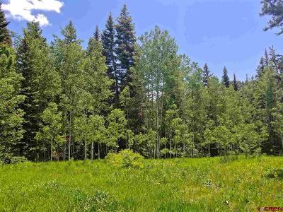 Durango Residential Lots & Land For Sale: 203 San Juan Dr.