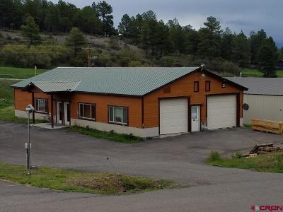 Commercial For Sale: 173 Goldmine Drive