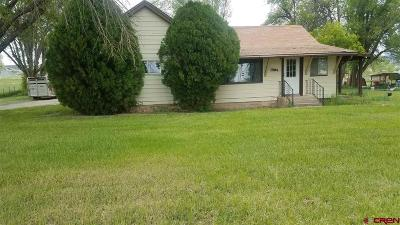 Single Family Home For Sale: 29387 92 Highway