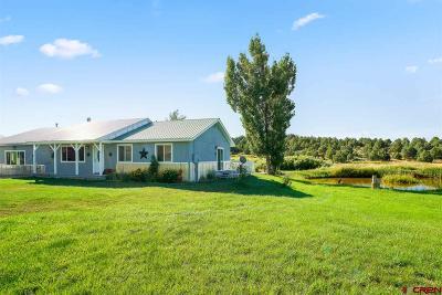 Ignacio Single Family Home For Sale: 172 Salt Creek Road