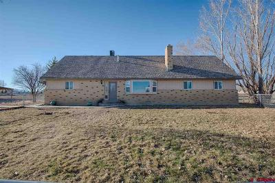 Montrose Single Family Home For Sale: 8990 6095 Road