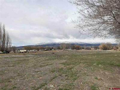 Delta Residential Lots & Land For Sale: (Lot 3)