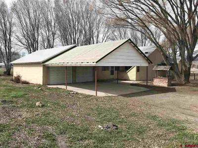Delta Single Family Home For Sale: 1397 E 7th Street