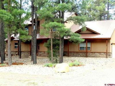 Pagosa Springs Single Family Home For Sale: 486 N Pagosa