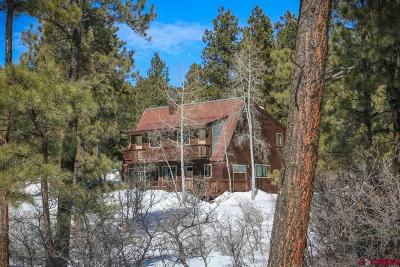 Pagosa Springs Single Family Home For Sale: 3506 County Road 600