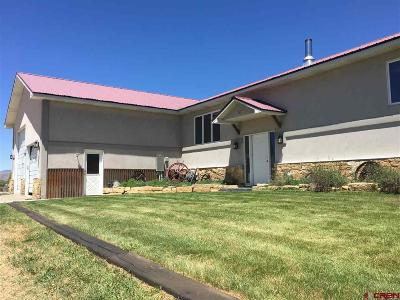 Gunnison Single Family Home For Sale: 106 Columbine Road