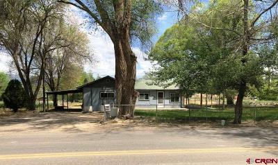 Delta Single Family Home For Sale: 1735 E 5th Street