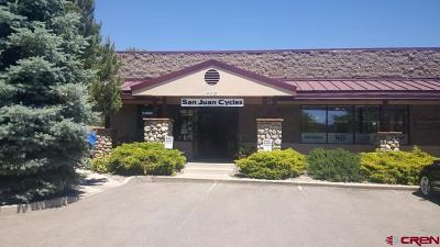 Durango, Bayfield, Cortez, Telluride Commercial For Sale: 48 County Road 250 #1