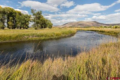Gunnison County Residential Lots & Land For Sale: 395 Red Tail Lane