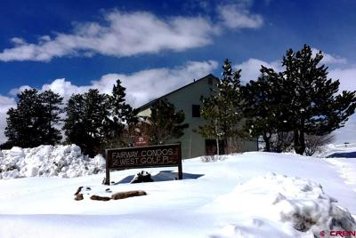 Pagosa Springs Condo/Townhouse For Sale: 21 W Golf Place #Unit C (