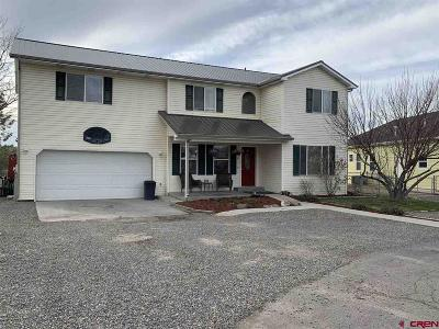 Montrose Single Family Home For Sale: 1215 Normandy Road